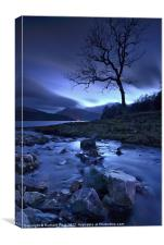 Lochside Tree, Canvas Print