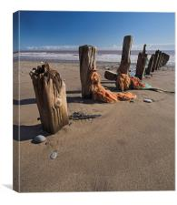 Weathered Groyne, Canvas Print