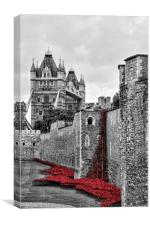 Memorial Poppies at the Tower. , Canvas Print