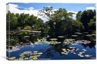 Denver Botanical Gardens, Canvas Print
