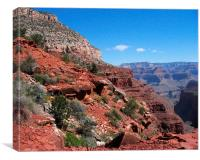 Grand Canyon Arizona Landscape
