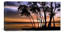 Sunset Point 1, Canvas Print