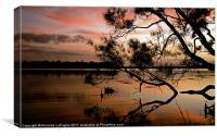 Shadow Sunset 1, Canvas Print