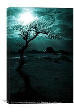 Midnight Sun, Canvas Print