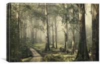 Silently Still, Canvas Print