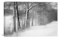 gateway to the winter forest, Canvas Print