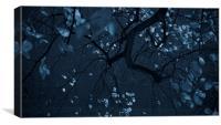 Autumn Night, Canvas Print