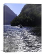 Boat on Milford Sound, Canvas Print