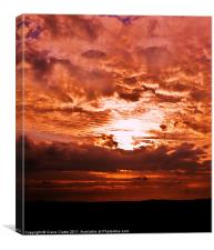 Evening Light, Canvas Print