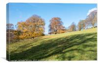 Autumn Light, Bamford, Derbyshire, Canvas Print