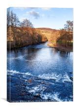 River Derwent, Derbyshire, Canvas Print