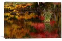 Harriman Lake, Canvas Print