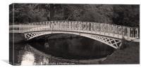 River Wandle bridge, Canvas Print
