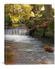 Beddington Park Waterfall, Canvas Print