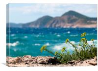 Island Foreground, Canvas Print