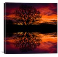 Dawn Greeting 2, Canvas Print