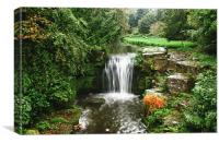 Jesmond Dene Waterfall, Canvas Print