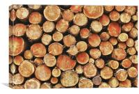 Logs and More Logs, Canvas Print