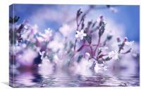 WaterFairies, Canvas Print