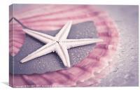 Starfish, Canvas Print