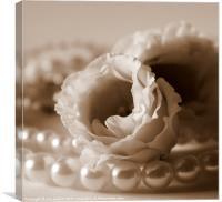 Petals and Pearls 2, Canvas Print