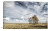 Snape Maltings landscape, Canvas Print