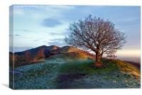 Malvern Morning, Canvas Print