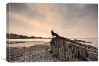 Labrador Rock, Canvas Print