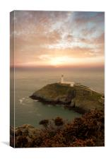 South Stacks at Sunset, Canvas Print