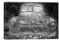 Car 54, Canvas Print