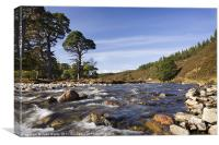 Quoich Water, Canvas Print