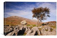 Tree amongst Limescale Rocks, Canvas Print