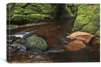 Devil's Pulpit, Finnich Gorge, Canvas Print