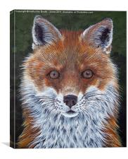 Red Fox, Canvas Print