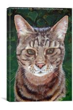 Tabby Cat, Canvas Print