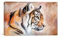 Watercolour Tiger, Canvas Print
