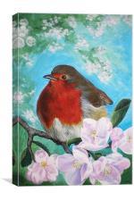 Spring Robin, Canvas Print