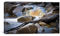 Moorland Stream, Canvas Print
