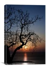 Sundown, Canvas Print