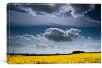 Big Sky, Canvas Print