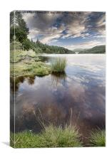 Brim full at Derwent, Canvas Print