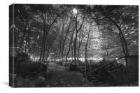 Bryant Park, New York City, Canvas Print