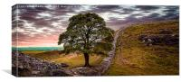 Sycamore Gap - Iconic Northumbria, Canvas Print