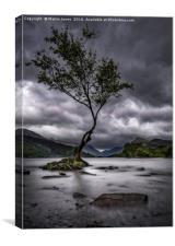 Rain over Llyn Padarn, Canvas Print
