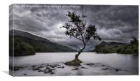 Across the Lake to Llanberis, Canvas Print