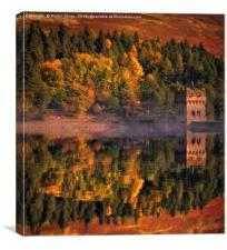 Autumn comes to Derwent, Canvas Print