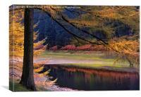 Autumn Splendour in the Peak District, Canvas Print