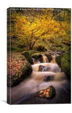 The Wyming Brook, Canvas Print