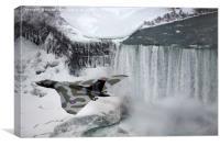Vulcan XL384 of Scampton Wing over Niagara Falls, Canvas Print