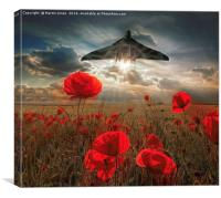 Olympus Thunder over the Poppies, Canvas Print